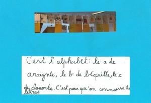 P1C Antoinette 4