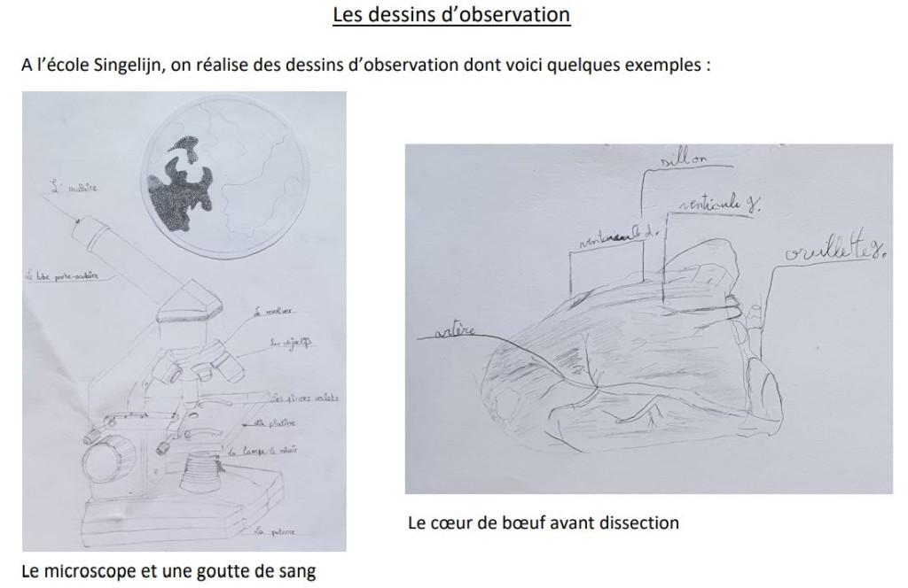 P5C emmanuel dessins